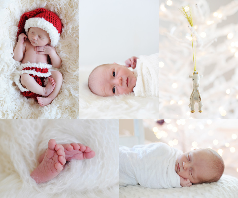 Christmas baby south tampa newborn photographer stacy larsen photography